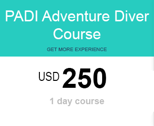 AOWC price for diving Lembongan