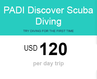 DSD price for diving Lembongan