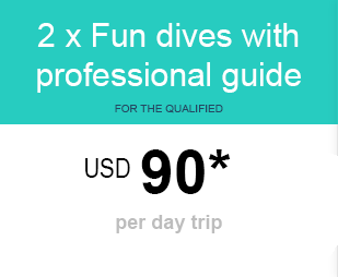 Fun Dive price for diving Lembongan
