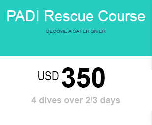 RDC price for diving Lembongan