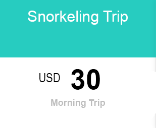 Snorkeling price for diving Lembongan