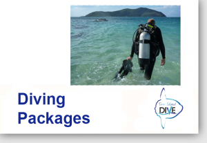 Diving and Accommodation Packages - Lembongan Diving Sites