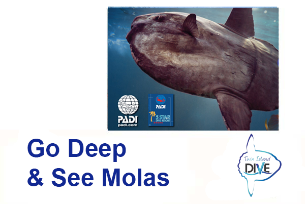 Special Offer - Go Deep and see Molas
