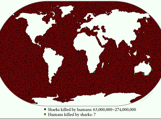 Shark fishing numbers vs sharks killing people