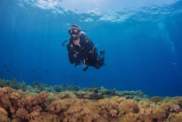 Christmas Diving - Diver Photo