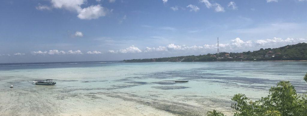 Seaweed Farm - About Lembongan