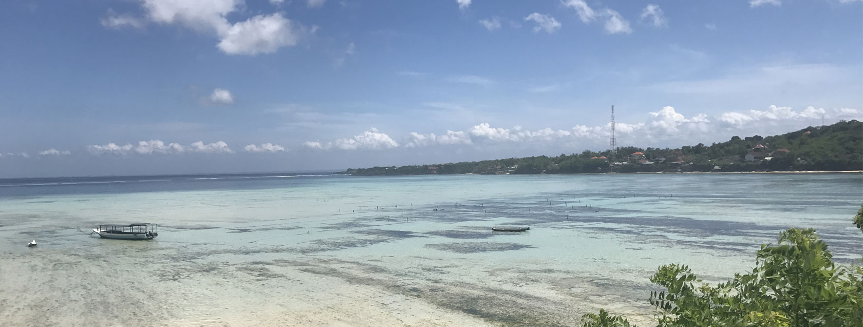 Seaweed Farms - Lembongan Sightseeing