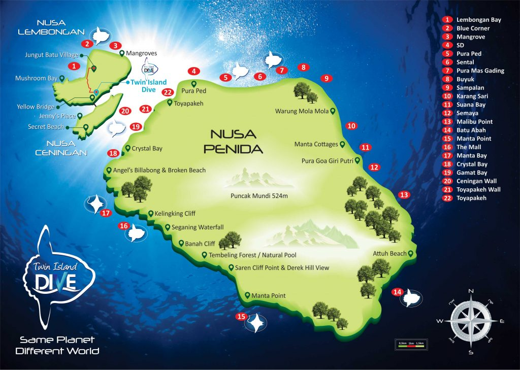Lembongan Diving Sites