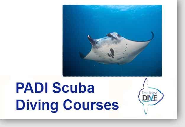 Fun Diving in Lembongan - Courses