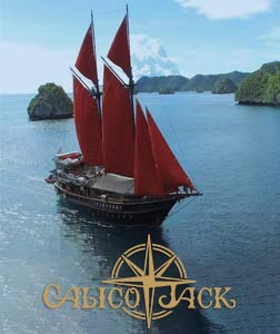 Partnerships: Calico Jack
