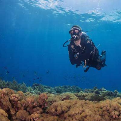 Drift Diving special offers